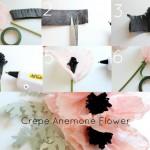 Цветы анемоны