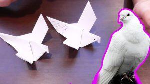 Символ мира голубь оригами