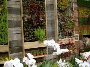 Вертикальные сады - что это такое