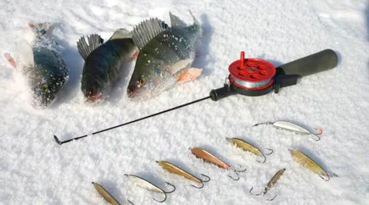 Особенности зимней рыбалки - как выбрать удочку